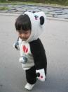 パンダになってどこまでも!